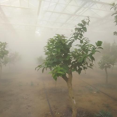 园林微雾降温保湿